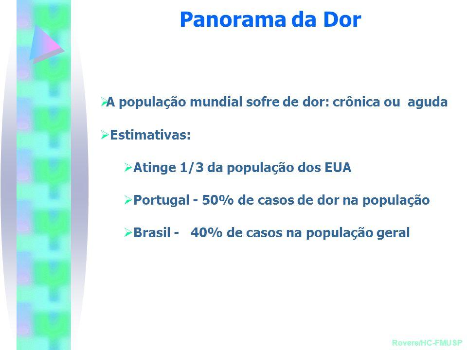Panorama da Dor A população mundial sofre de dor: crônica ou aguda
