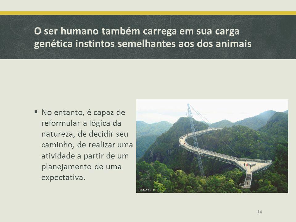 O ser humano também carrega em sua carga genética instintos semelhantes aos dos animais