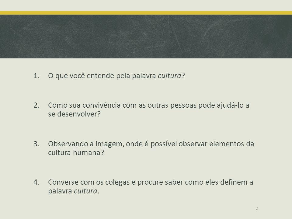 O que você entende pela palavra cultura