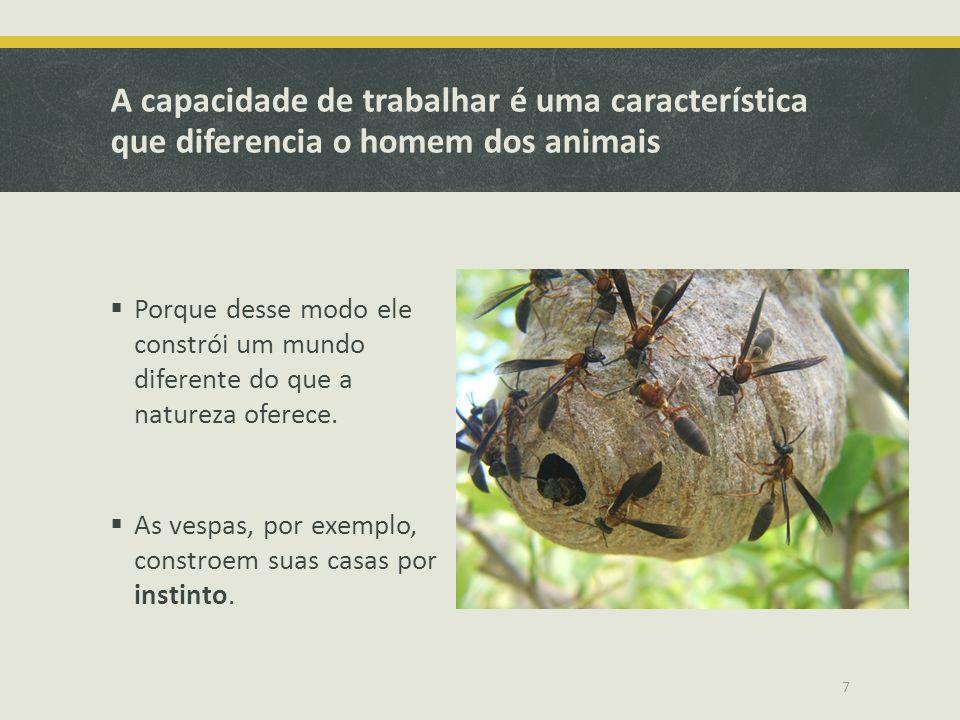 A capacidade de trabalhar é uma característica que diferencia o homem dos animais