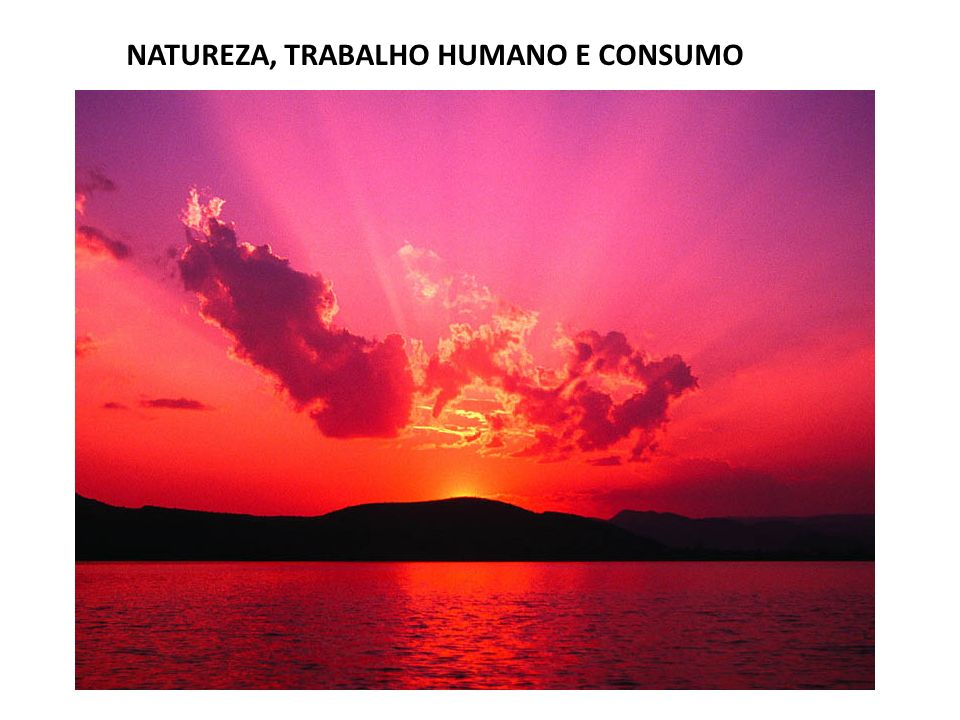 NATUREZA, TRABALHO HUMANO E CONSUMO