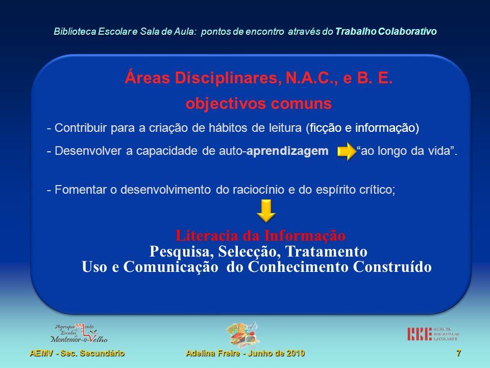 Áreas Disciplinares, N.A.C., e B. E. objectivos comuns
