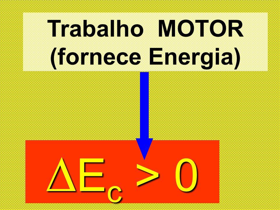 Trabalho MOTOR (fornece Energia)