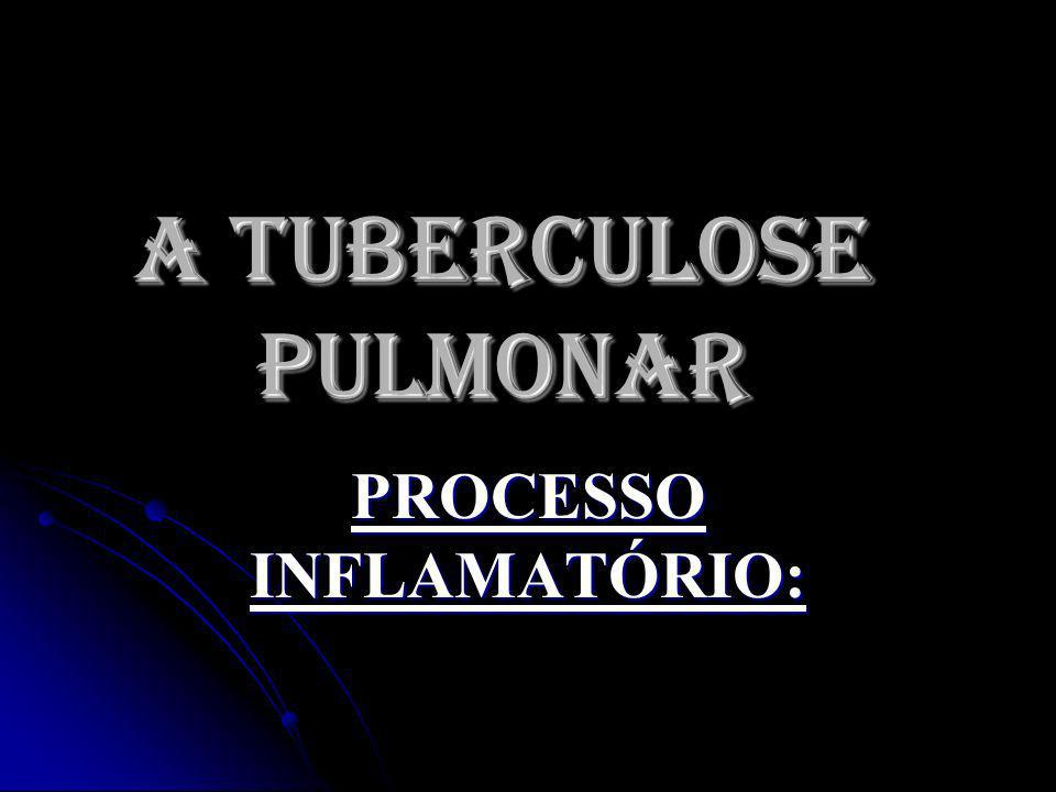 A TUBERCULOSE PULMONAR