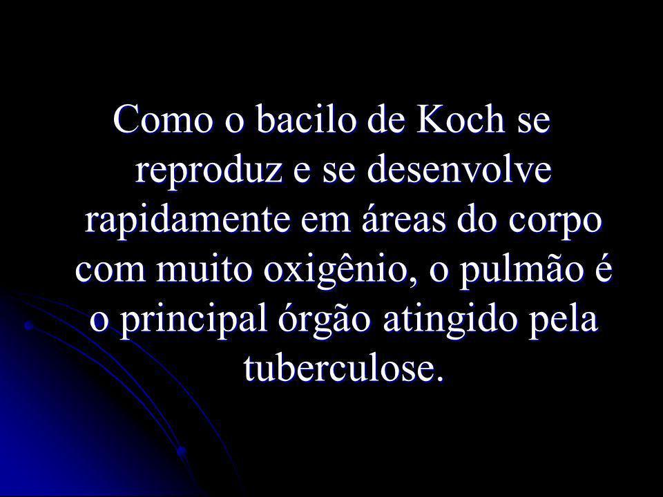 Como o bacilo de Koch se reproduz e se desenvolve rapidamente em áreas do corpo com muito oxigênio, o pulmão é o principal órgão atingido pela tuberculose.