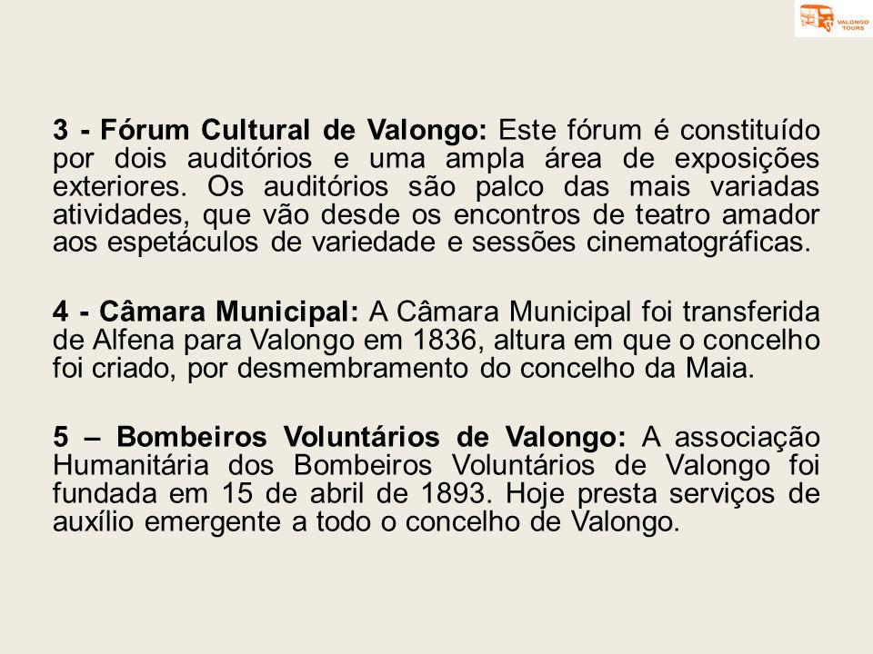 3 - Fórum Cultural de Valongo: Este fórum é constituído por dois auditórios e uma ampla área de exposições exteriores. Os auditórios são palco das mais variadas atividades, que vão desde os encontros de teatro amador aos espetáculos de variedade e sessões cinematográficas.
