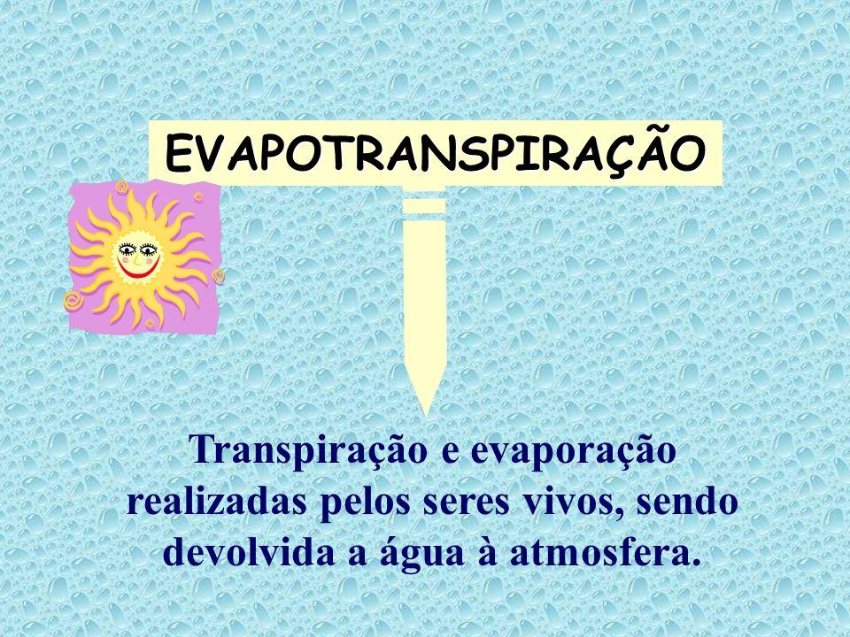 EVAPOTRANSPIRAÇÃO Transpiração e evaporação realizadas pelos seres vivos, sendo devolvida a água à atmosfera.