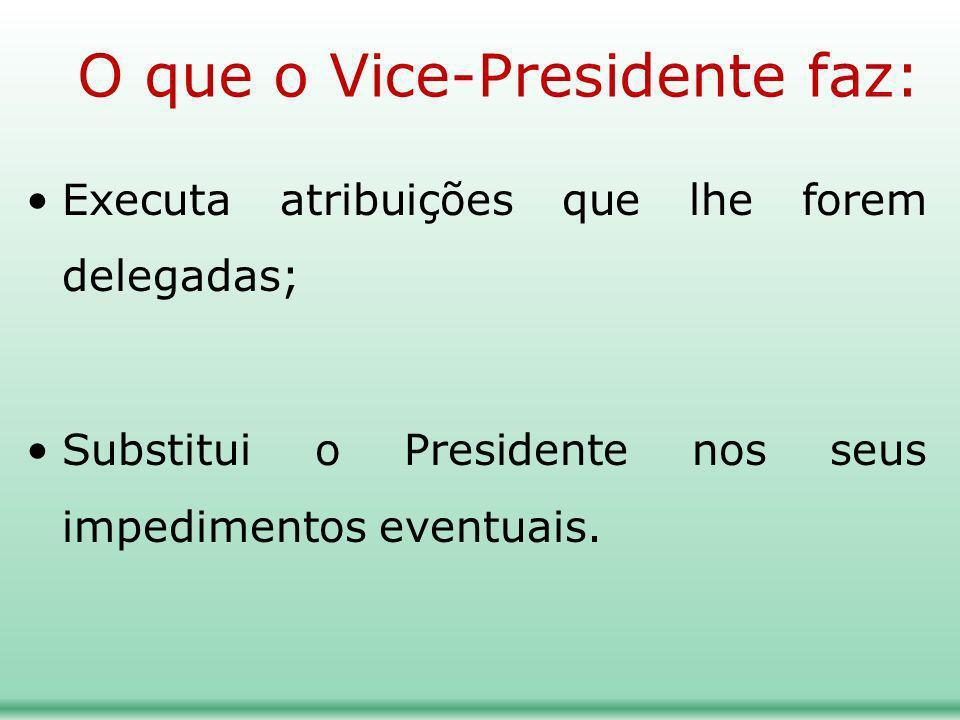 O que o Vice-Presidente faz: