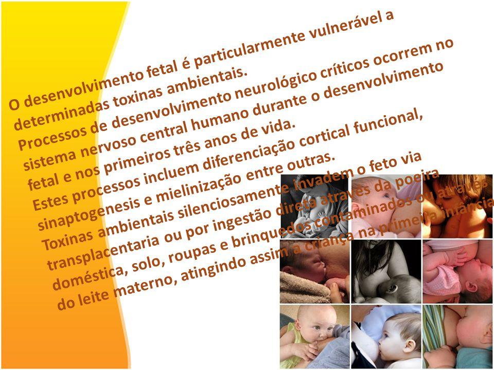 O desenvolvimento fetal é particularmente vulnerável a determinadas toxinas ambientais.