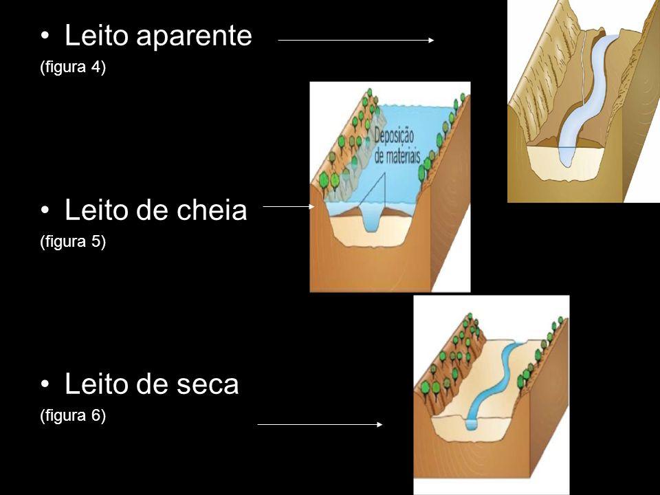 Leito aparente Leito de cheia Leito de seca (figura 4) (figura 5)