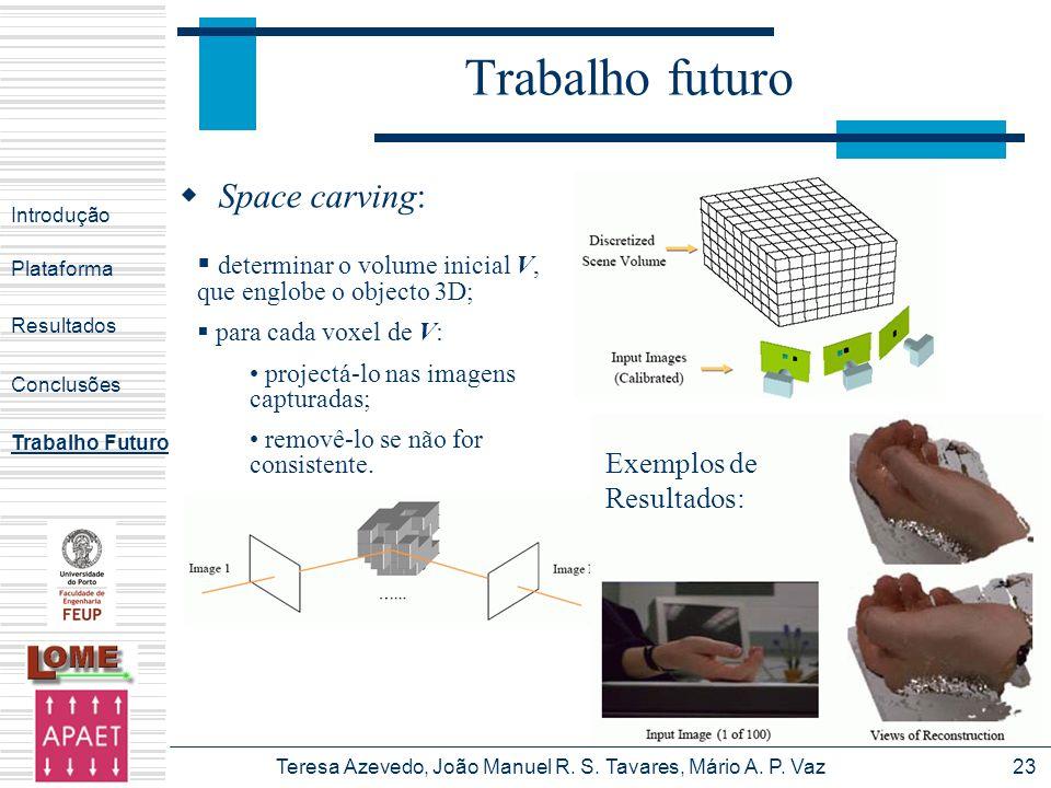 Teresa Azevedo, João Manuel R. S. Tavares, Mário A. P. Vaz