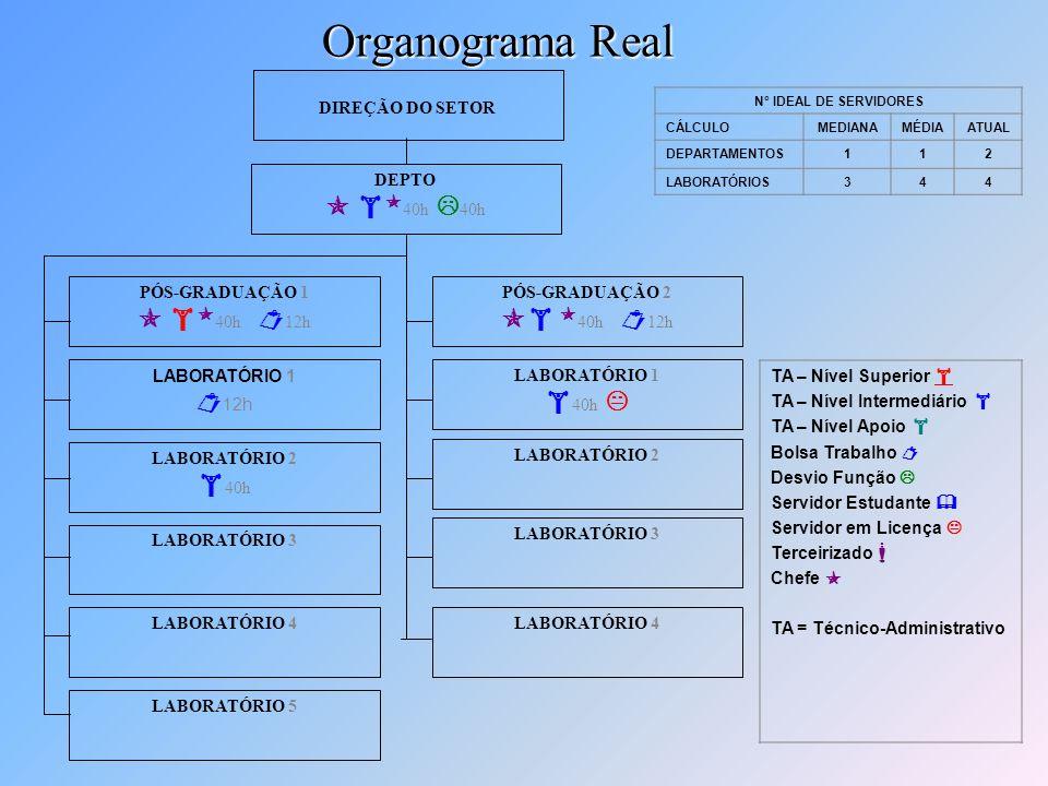 Organograma Real  40h 40h 40h  40h 12h  40h 12h 12h