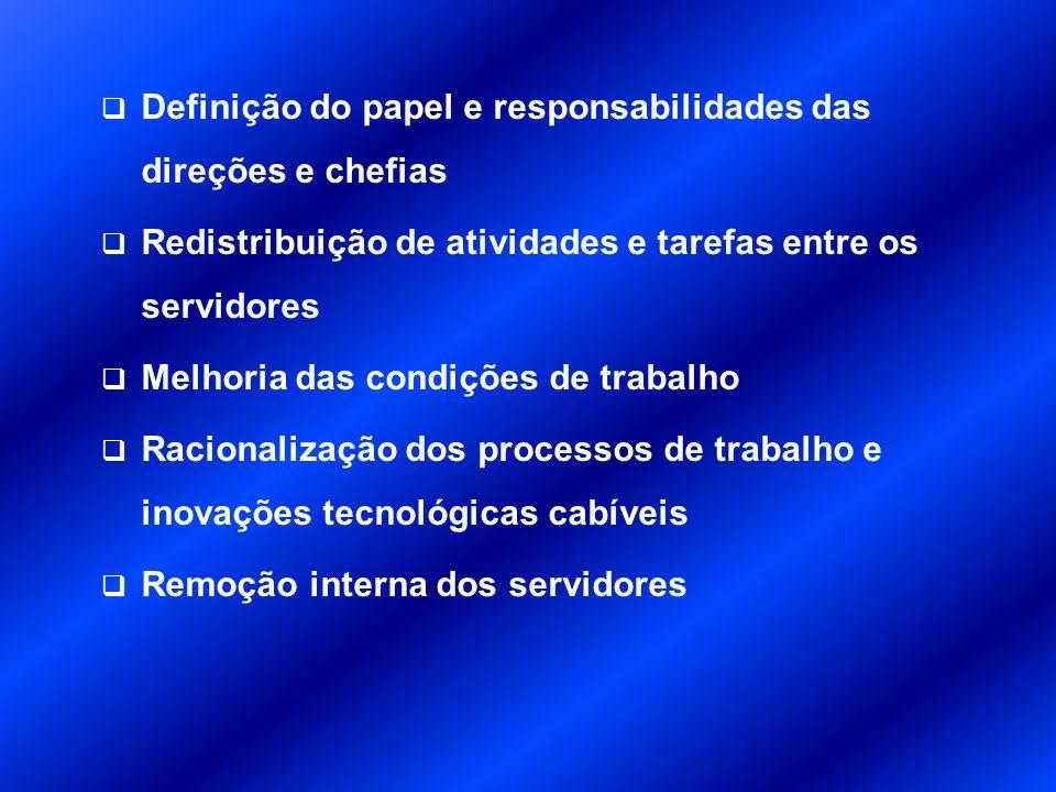 Definição do papel e responsabilidades das direções e chefias