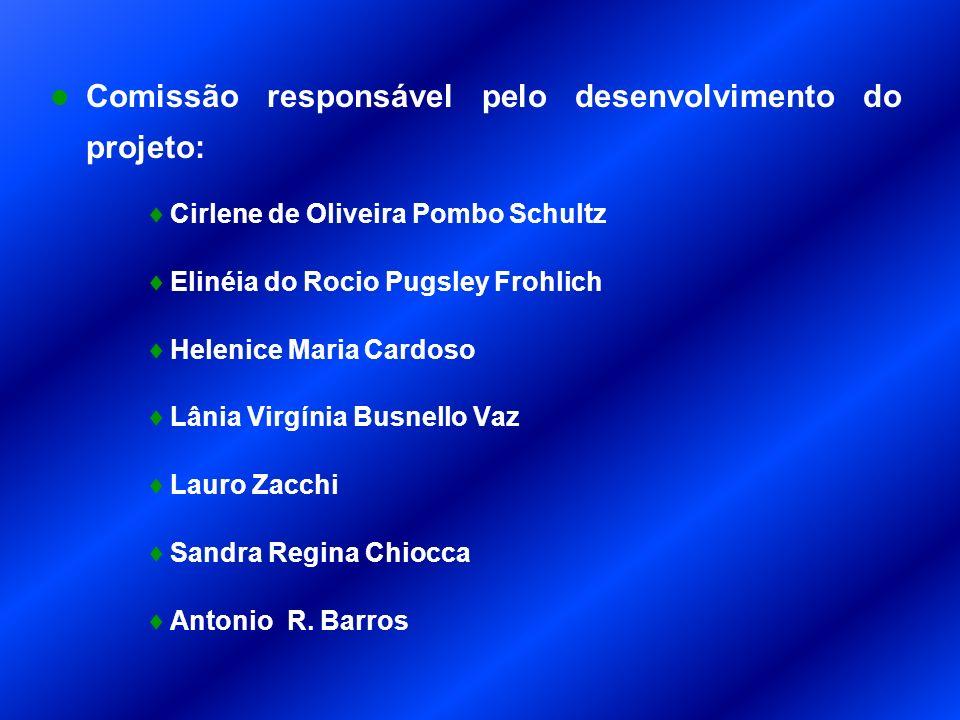 Comissão responsável pelo desenvolvimento do projeto: