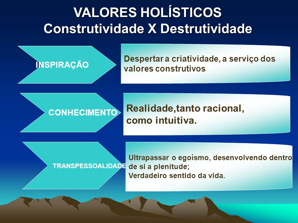 VALORES HOLÍSTICOS Construtividade X Destrutividade