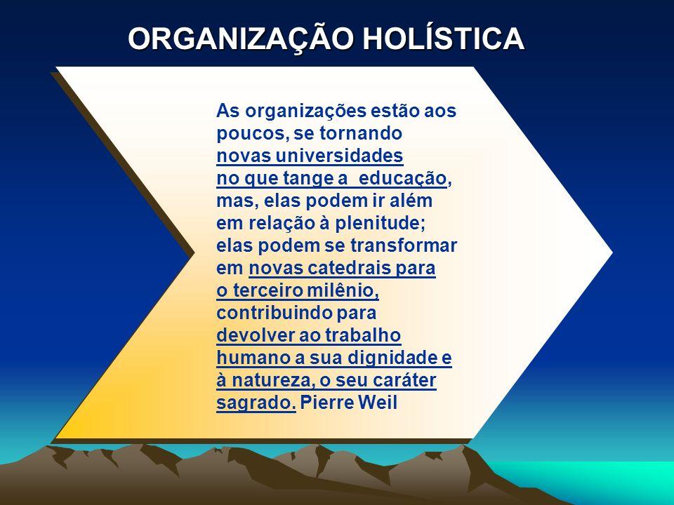 ORGANIZAÇÃO HOLÍSTICA