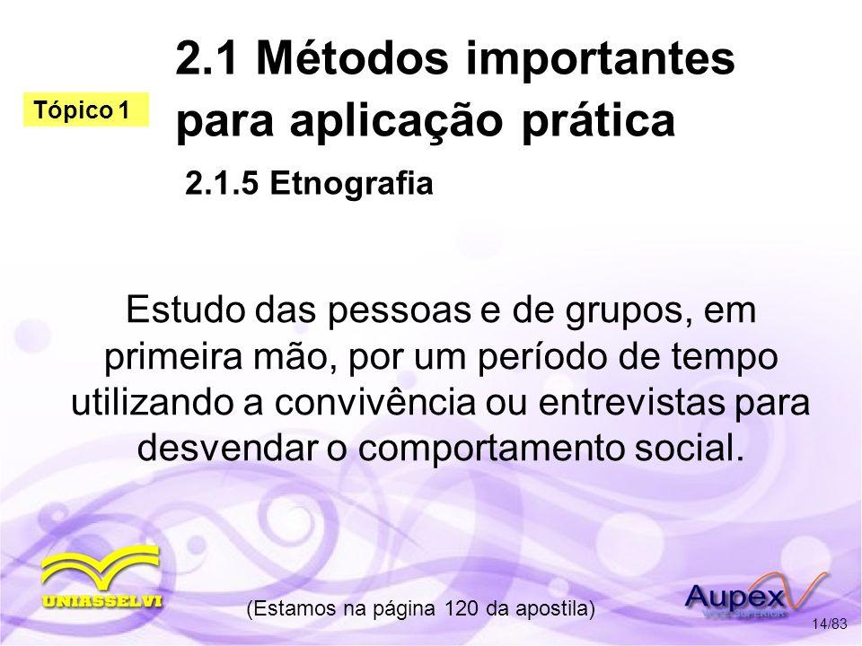2.1 Métodos importantes para aplicação prática 2.1.5 Etnografia