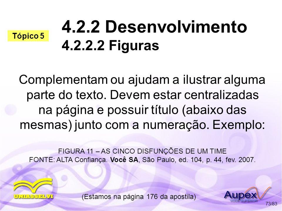 4.2.2 Desenvolvimento 4.2.2.2 Figuras