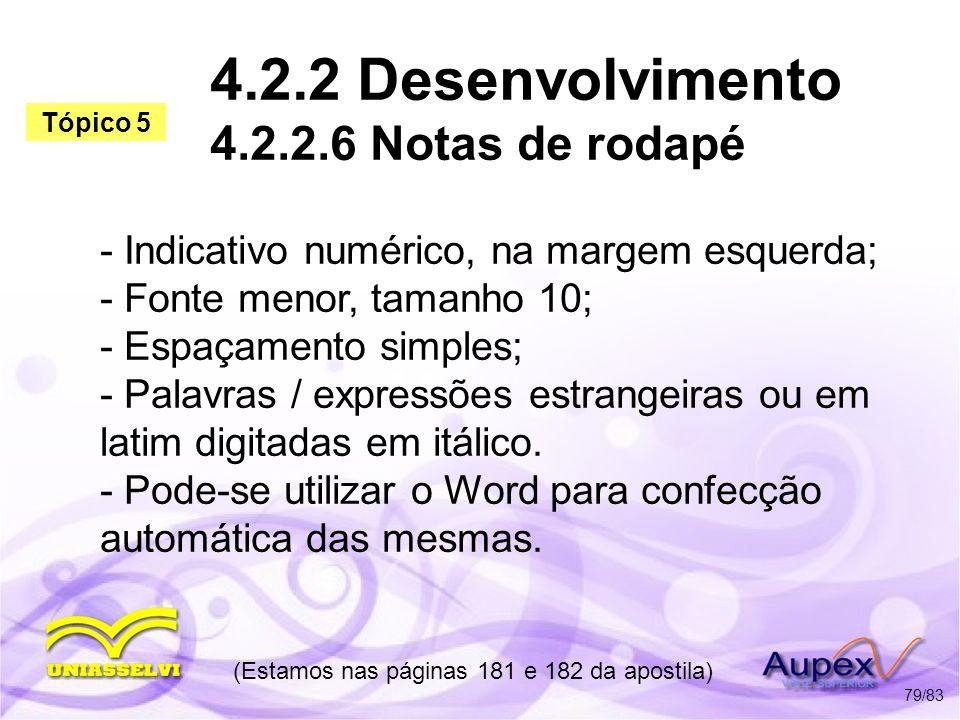 4.2.2 Desenvolvimento 4.2.2.6 Notas de rodapé