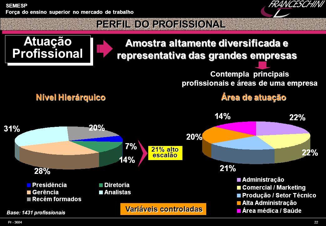 Atuação Profissional PERFIL DO PROFISSIONAL
