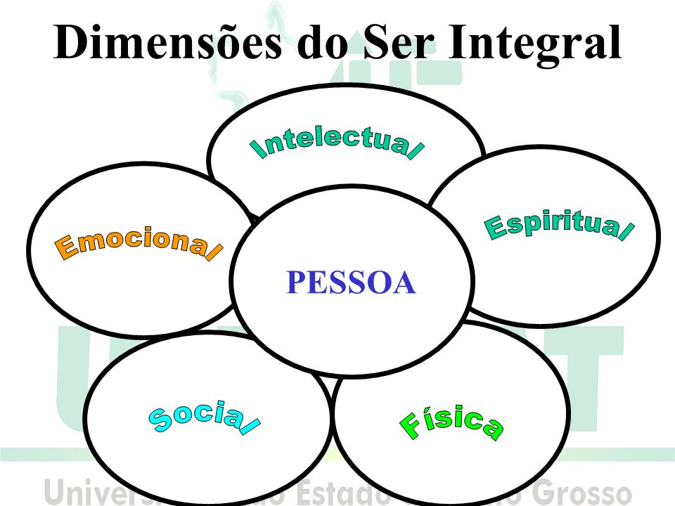 Dimensões do Ser Integral