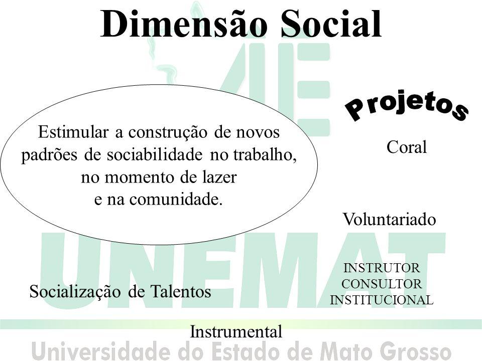 Dimensão Social Projetos Estimular a construção de novos