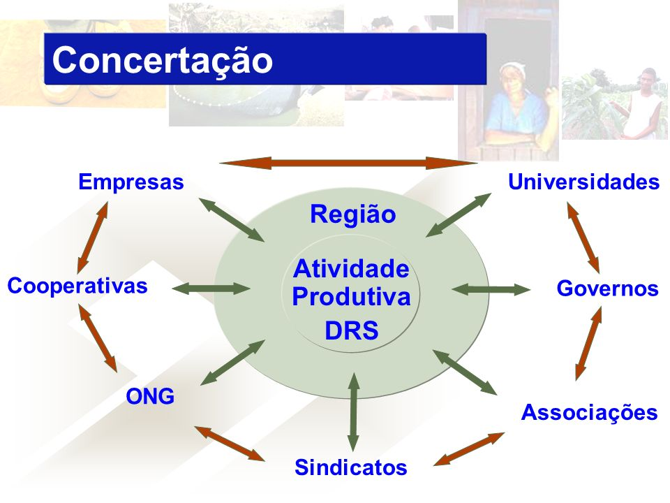 Concertação Região Atividade Produtiva DRS Empresas Universidades