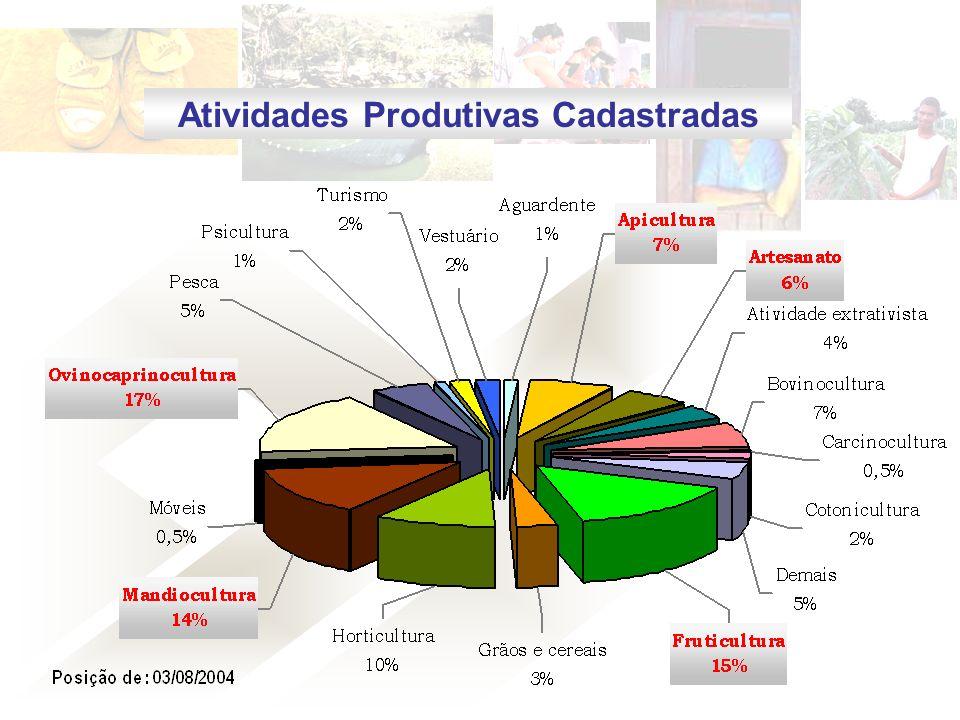 Atividades Produtivas Cadastradas