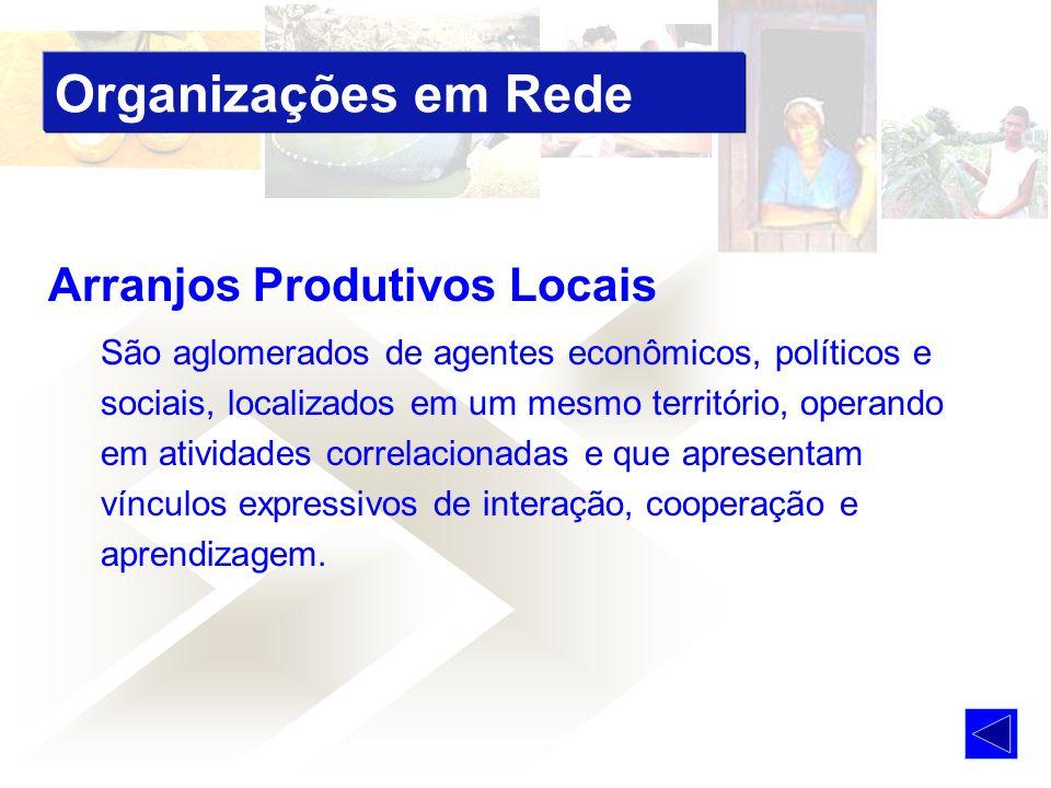 Organizações em Rede Arranjos Produtivos Locais