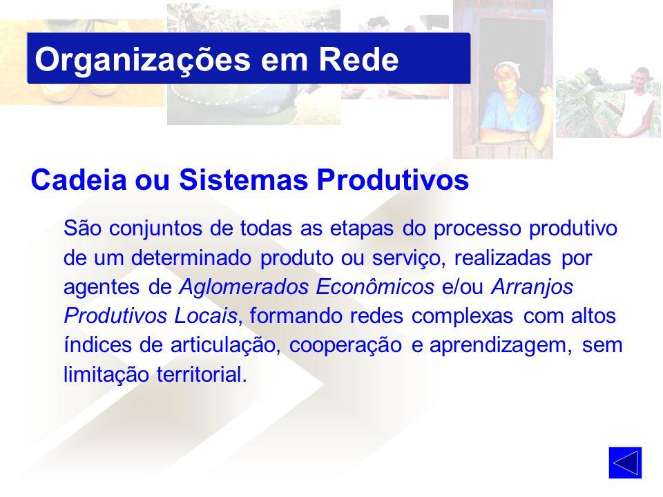 Organizações em Rede Cadeia ou Sistemas Produtivos