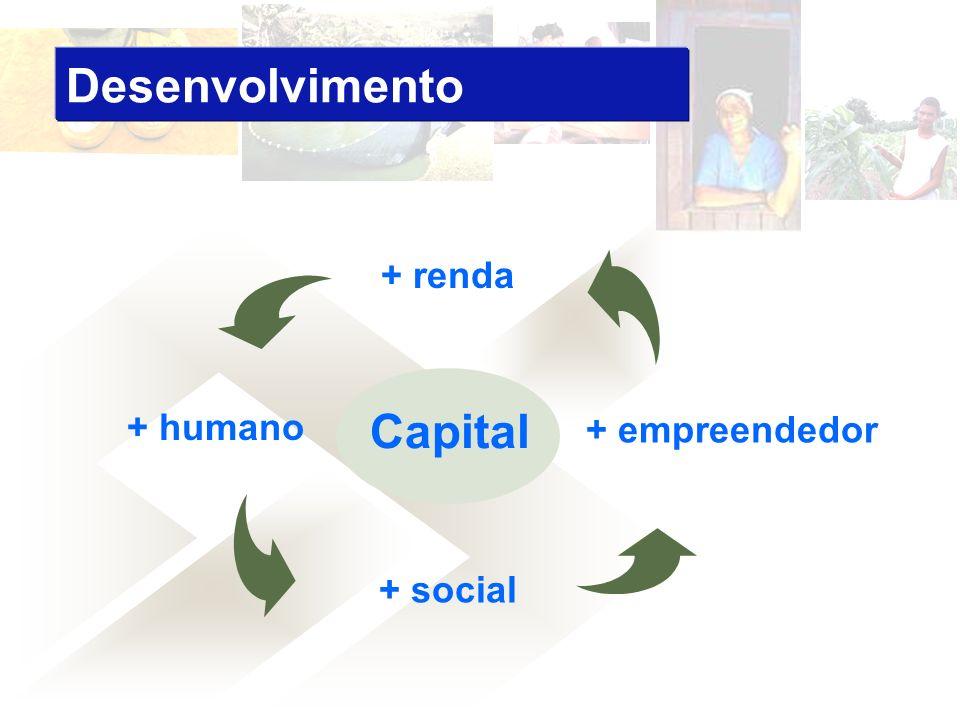 Desenvolvimento Capital + renda + humano + empreendedor + social