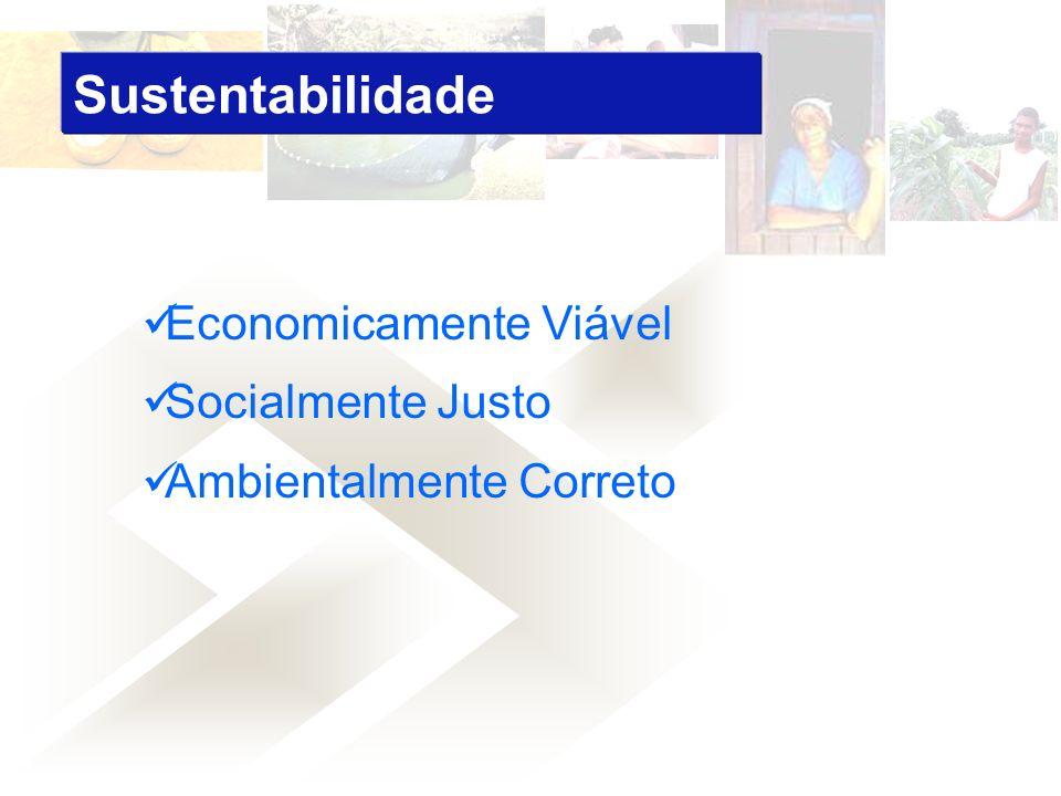 Sustentabilidade Economicamente Viável Socialmente Justo