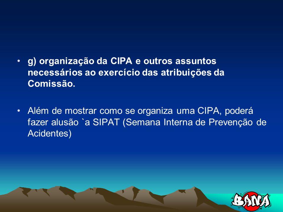 g) organização da CIPA e outros assuntos necessários ao exercício das atribuições da Comissão.
