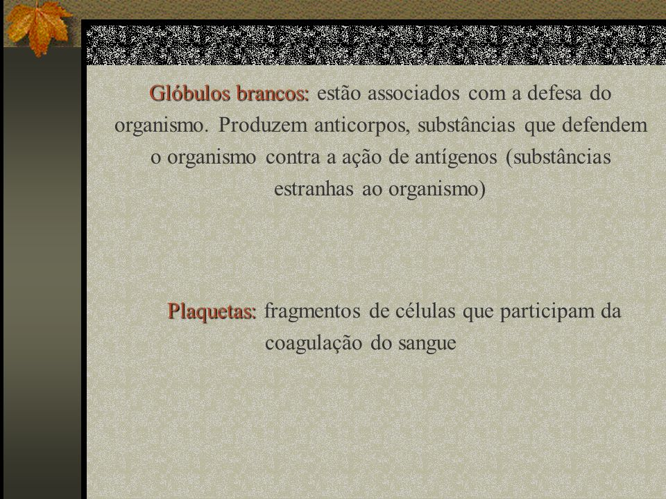 Glóbulos brancos: estão associados com a defesa do organismo