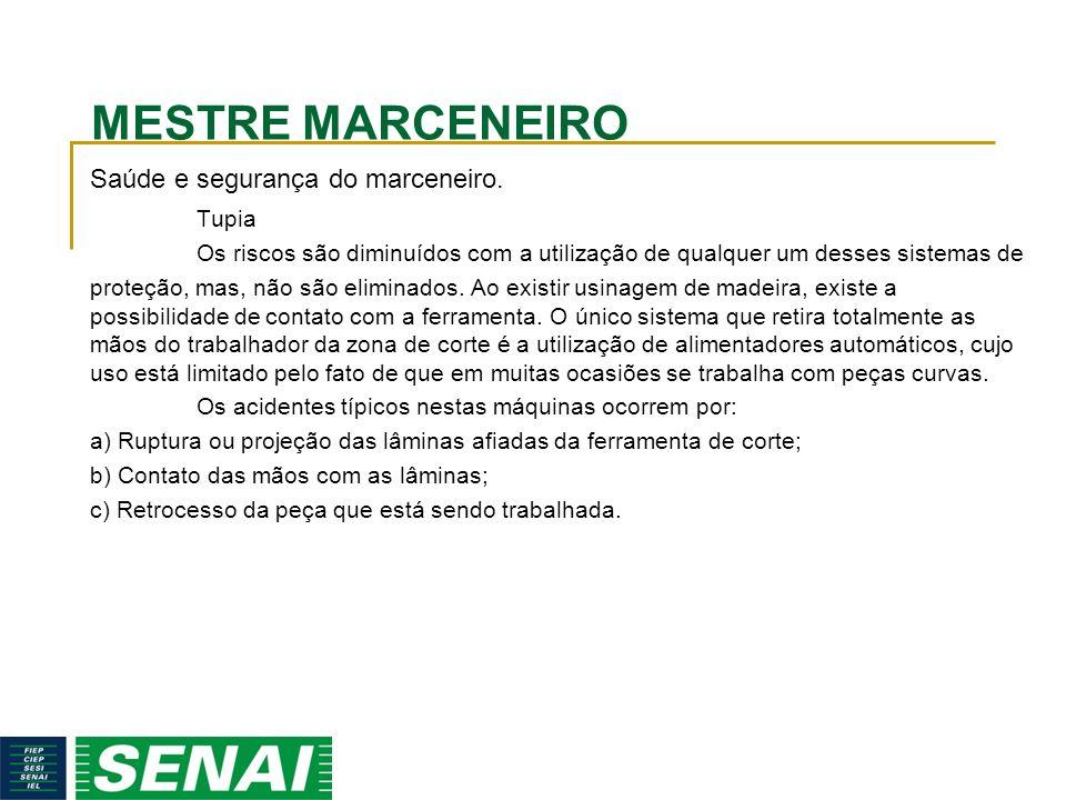 MESTRE MARCENEIRO Saúde e segurança do marceneiro. Tupia