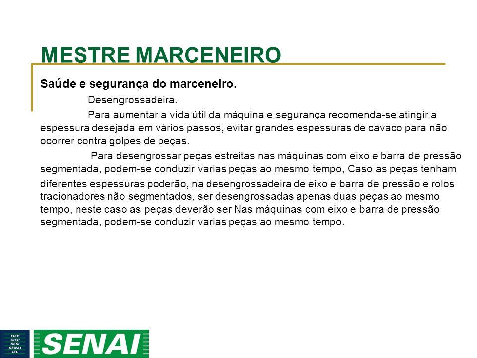 MESTRE MARCENEIRO Saúde e segurança do marceneiro. Desengrossadeira.