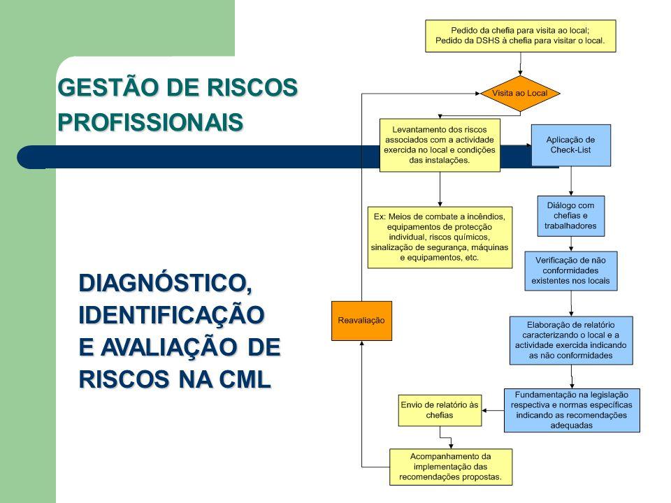 GESTÃO DE RISCOS PROFISSIONAIS DIAGNÓSTICO, IDENTIFICAÇÃO E AVALIAÇÃO DE RISCOS NA CML