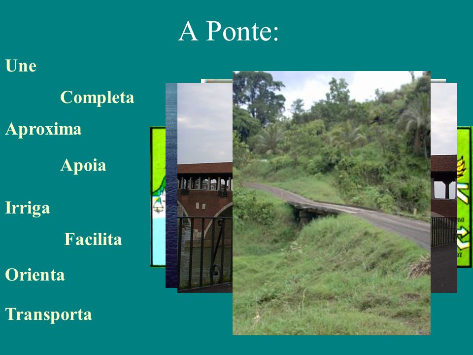 A Ponte: Une Completa Aproxima Apoia Irriga Facilita Orienta