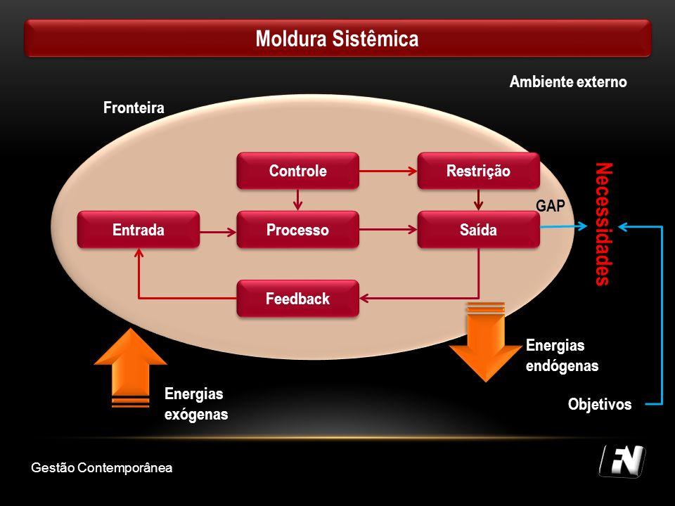 Moldura Sistêmica Necessidades Ambiente externo Fronteira Processo