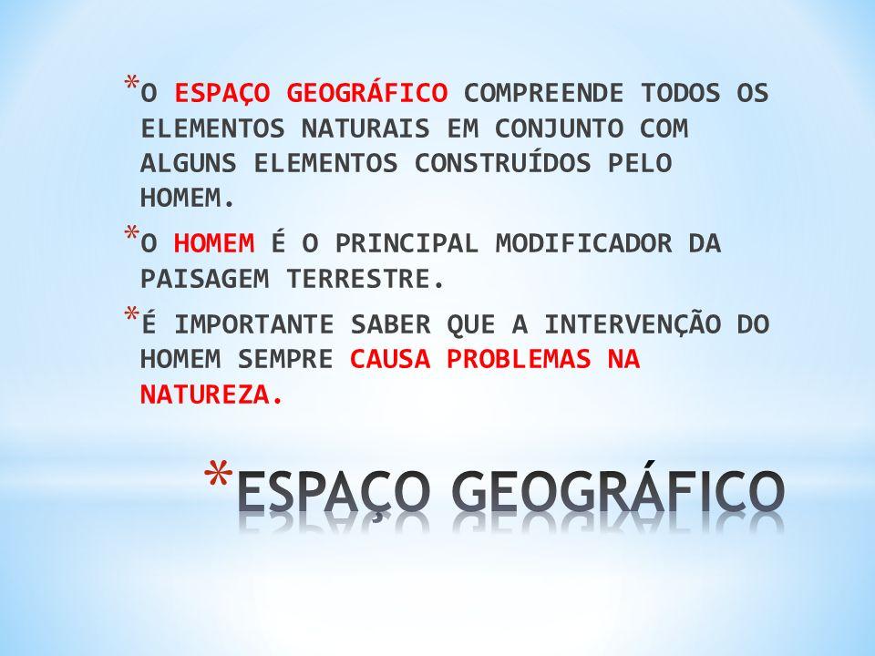 O ESPAÇO GEOGRÁFICO COMPREENDE TODOS OS ELEMENTOS NATURAIS EM CONJUNTO COM ALGUNS ELEMENTOS CONSTRUÍDOS PELO HOMEM.