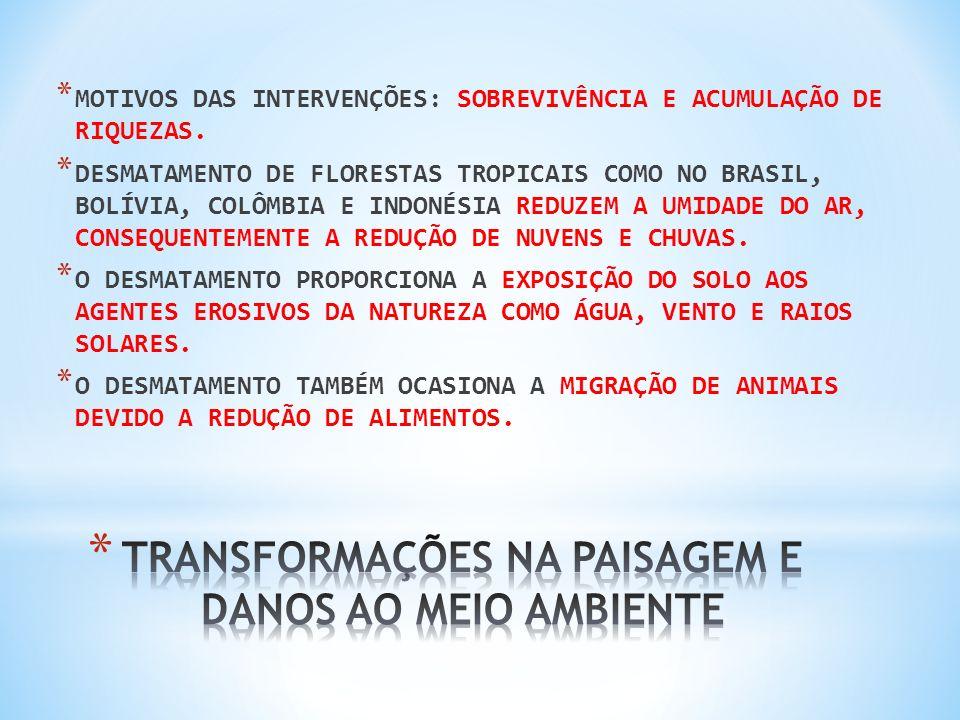 TRANSFORMAÇÕES NA PAISAGEM E DANOS AO MEIO AMBIENTE