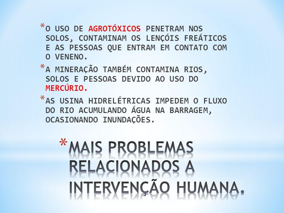 MAIS PROBLEMAS RELACIONADOS A INTERVENÇÃO HUMANA.