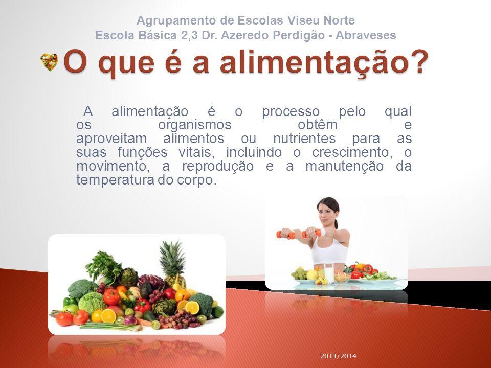 O que é a alimentação Agrupamento de Escolas Viseu Norte. Escola Básica 2,3 Dr. Azeredo Perdigão - Abraveses.