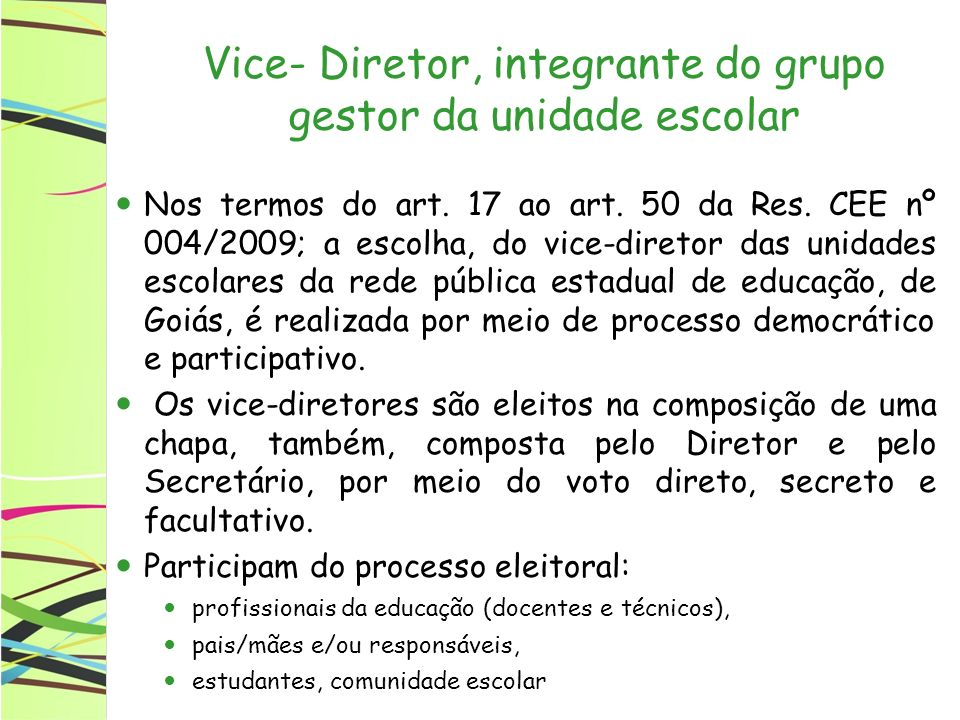 Vice- Diretor, integrante do grupo gestor da unidade escolar