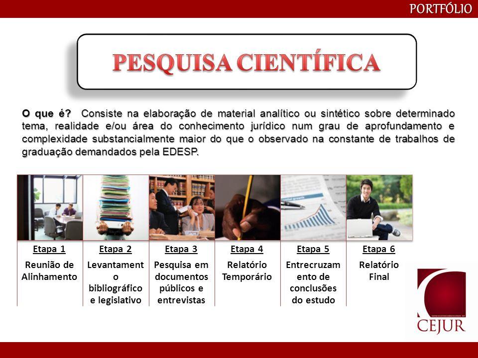 PESQUISA CIENTÍFICA PORTFÓLIO