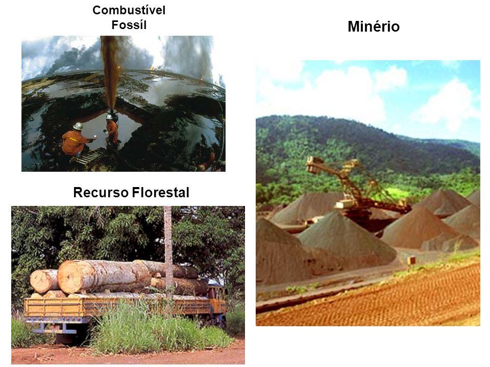 Combustível Fossíl Minério Recurso Florestal