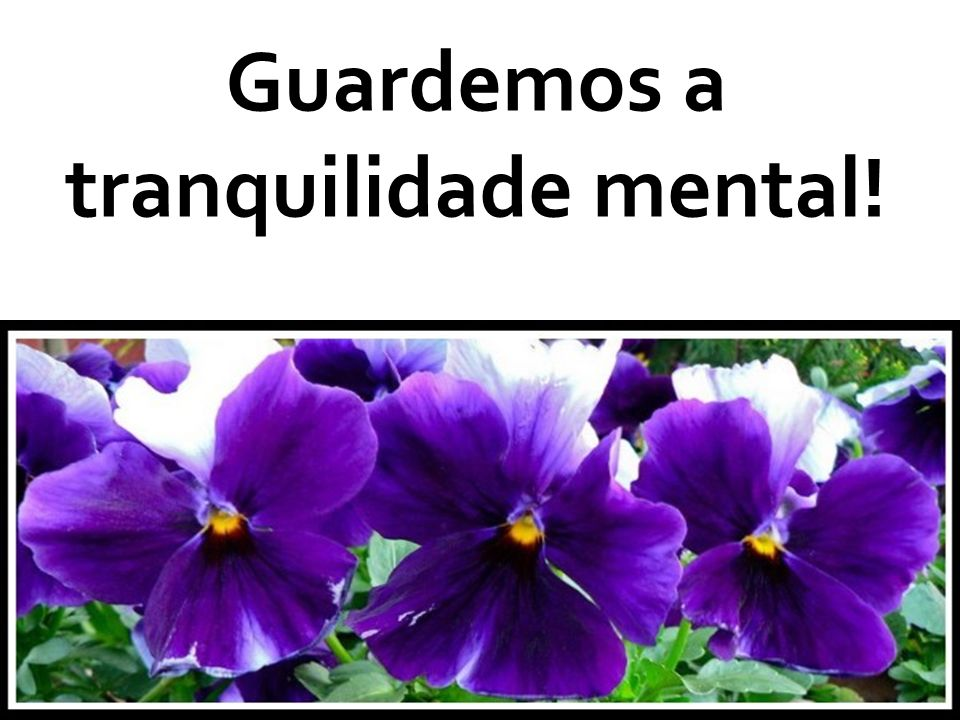 Guardemos a tranquilidade mental!