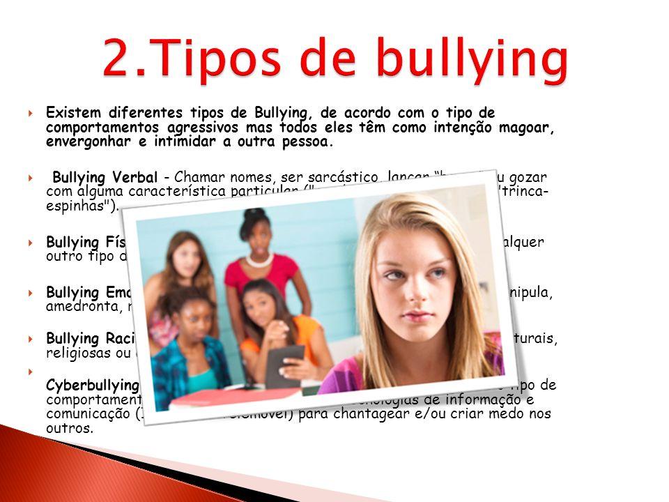 2.Tipos de bullying