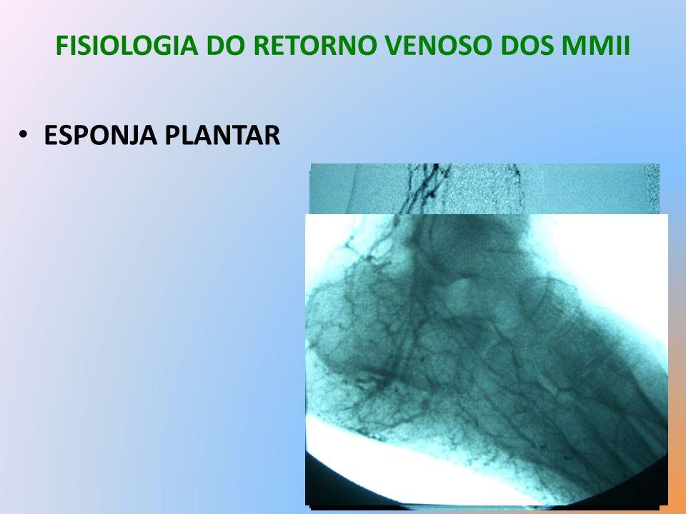 FISIOLOGIA DO RETORNO VENOSO DOS MMII