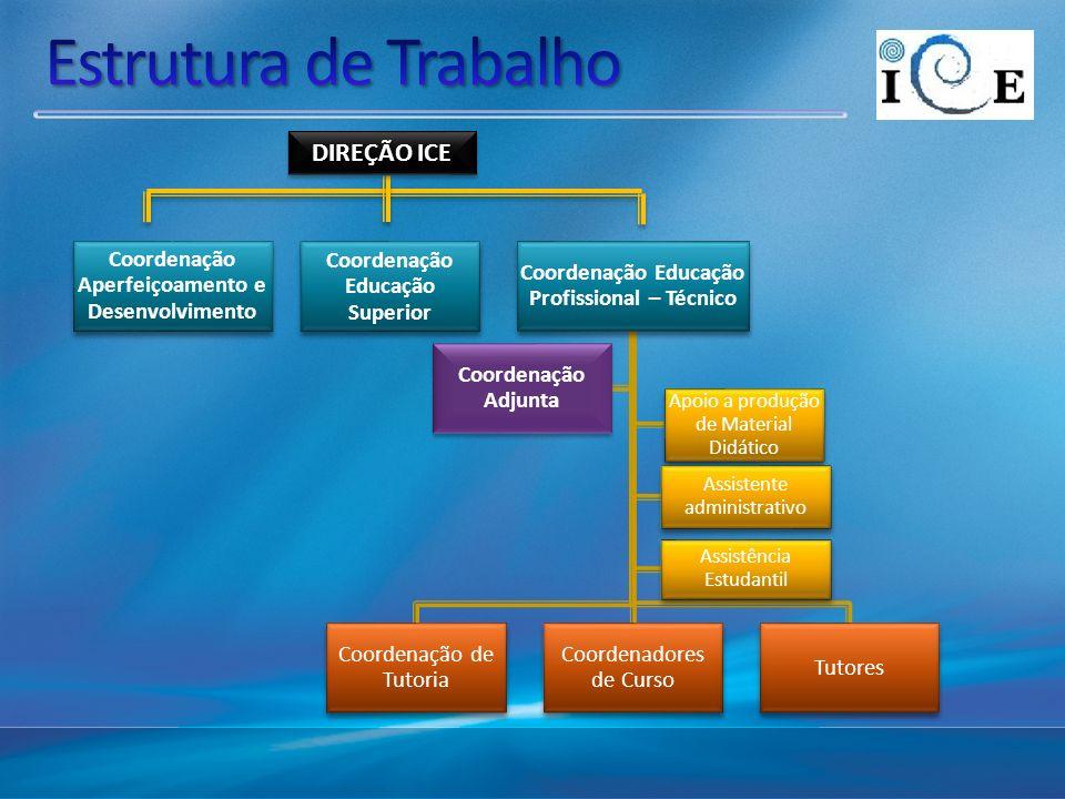 Estrutura de Trabalho DIREÇÃO ICE